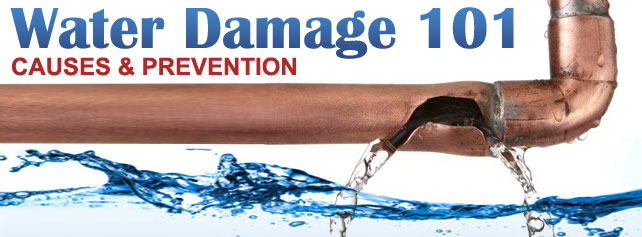Water Damage 101 - Causes & 101