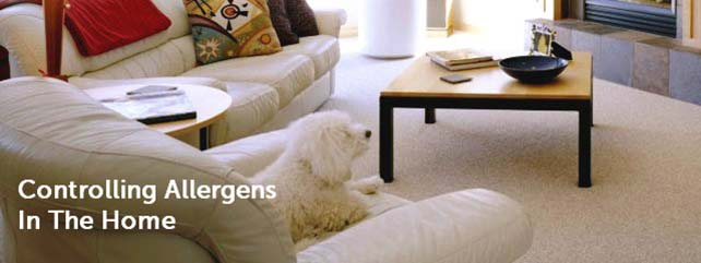 Controlling Allergens in the Home