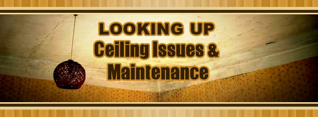 Looking Up: Ceiling Issues And Maintenance
