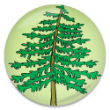 Picture of a Tree on a Button