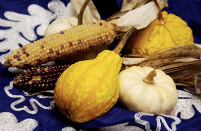 Fall Seasonal Veggies